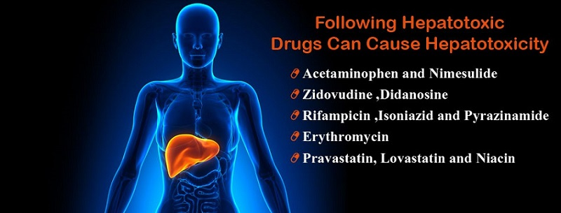 Hepatotoxicity Due to Drugs