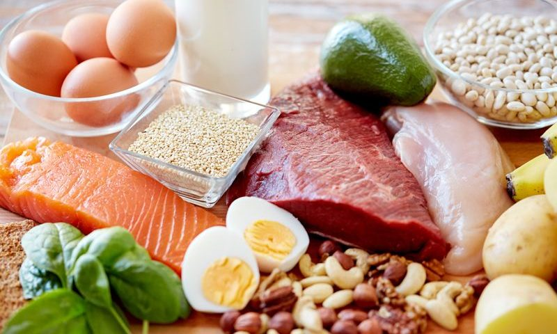optimal source of protein for building muscle mass