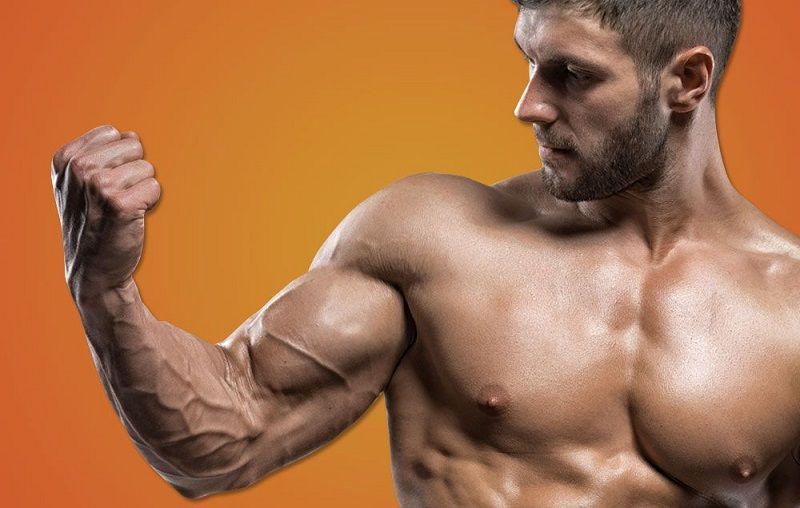 Here are 8 Workout to Help You Get Bigger Shoulders & Arms