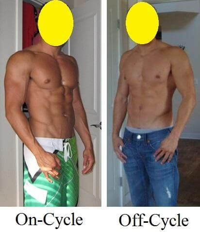 research showing on cycle and off cycle results using testosterone