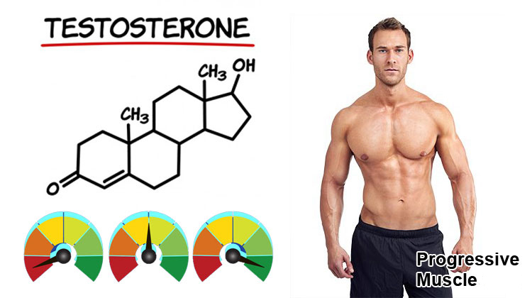Testosterone Levels - What's Considered Normal, High or Low?