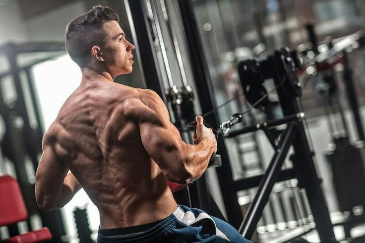 What Makes Anavar a Popular Cutting Steroid? Safer Alternative