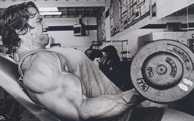 Arnold's Workouts Routine
