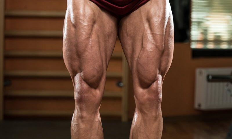 Hardcore Legs Workout+ Exercises