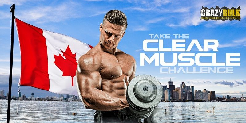 Buy legal steroids - crazy bulk canada