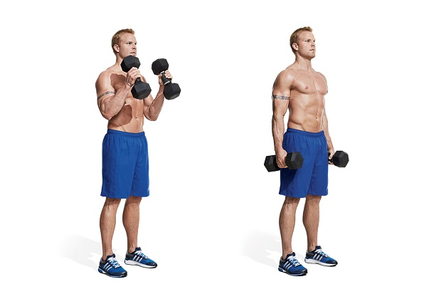 Standing Bicep Curl