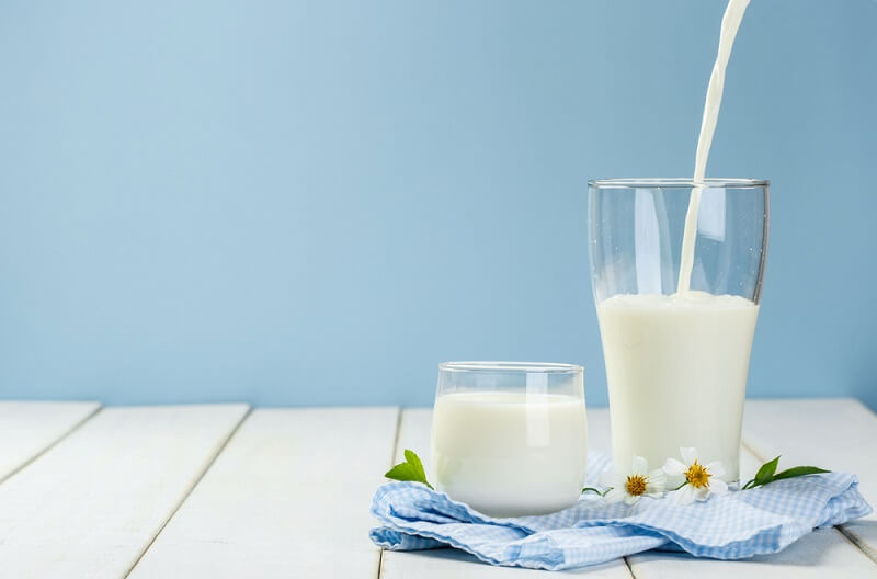 milk protein foods