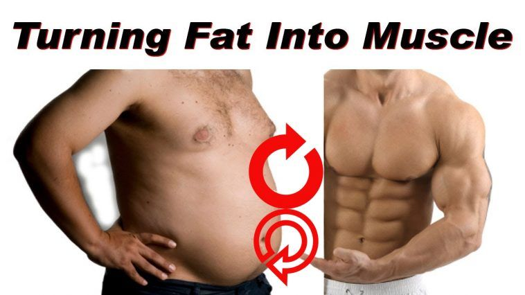 Muscle Turn Fat