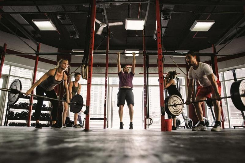 Cardiovascular Workout